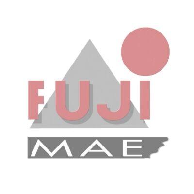 FujiMae akciók